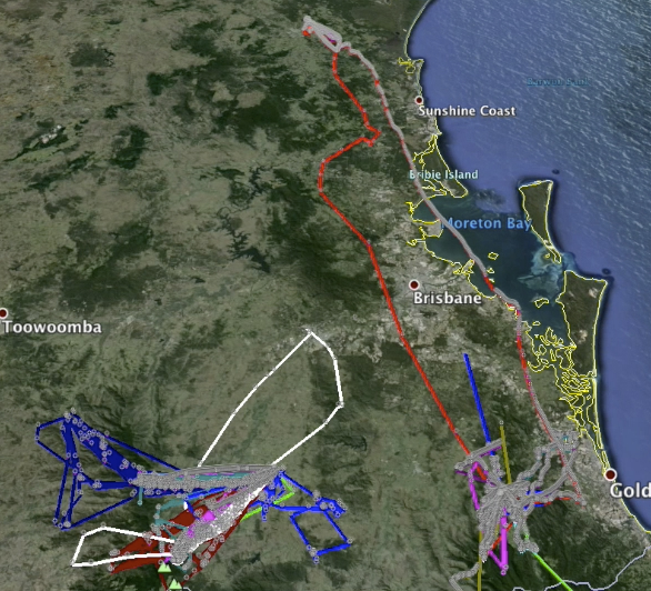 Captured trajectories from bats in the south east QLD area.